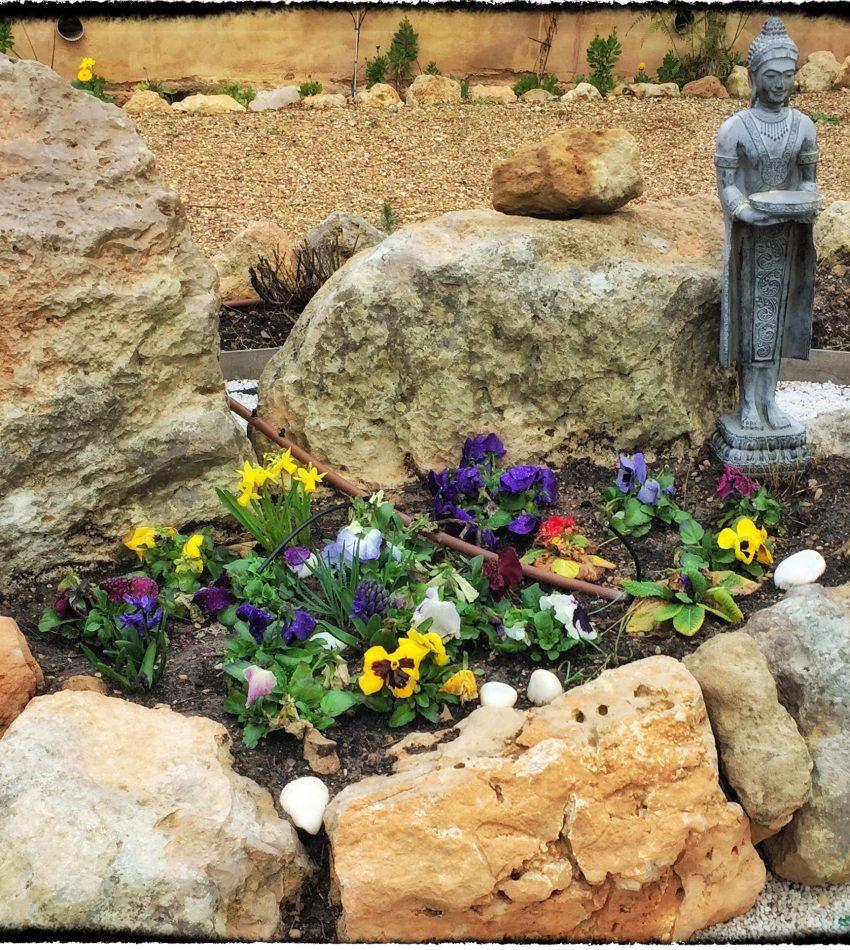 Introducción a la Meditación Zen en Mallorca